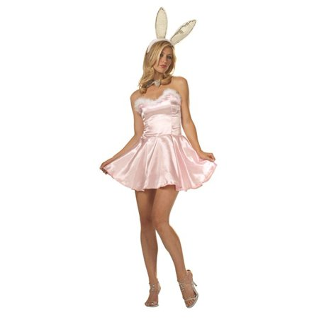 Costume For Bunny (Miss Bunny Costume)