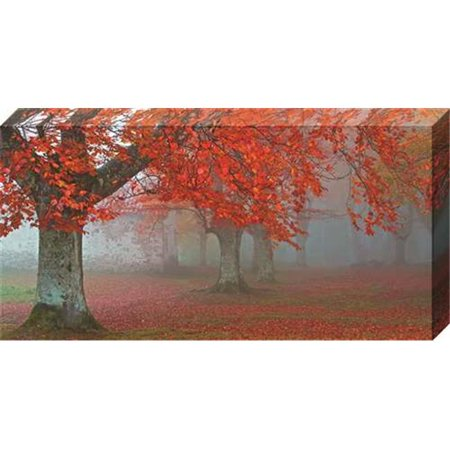 - North American Art NC2043 15 x 30 in. Arboles Rojos Canvas Gallery Wrapped Art Print
