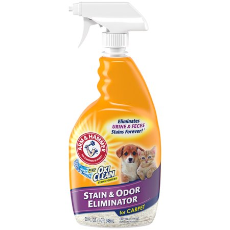 Orange Cat Odor Remover (Arm & Hammer Pet Stain & Odor Remover Plus Oxiclean, 32 fl oz)