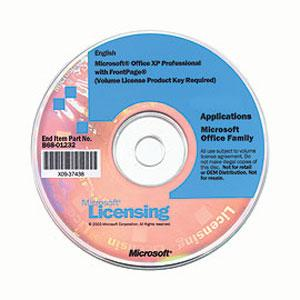 Microsoft Office Professional Edition - License & Softwar...