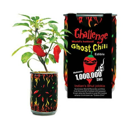 Ghost Chili Pepper In A Can (Hot Chili Pepper Seeds)