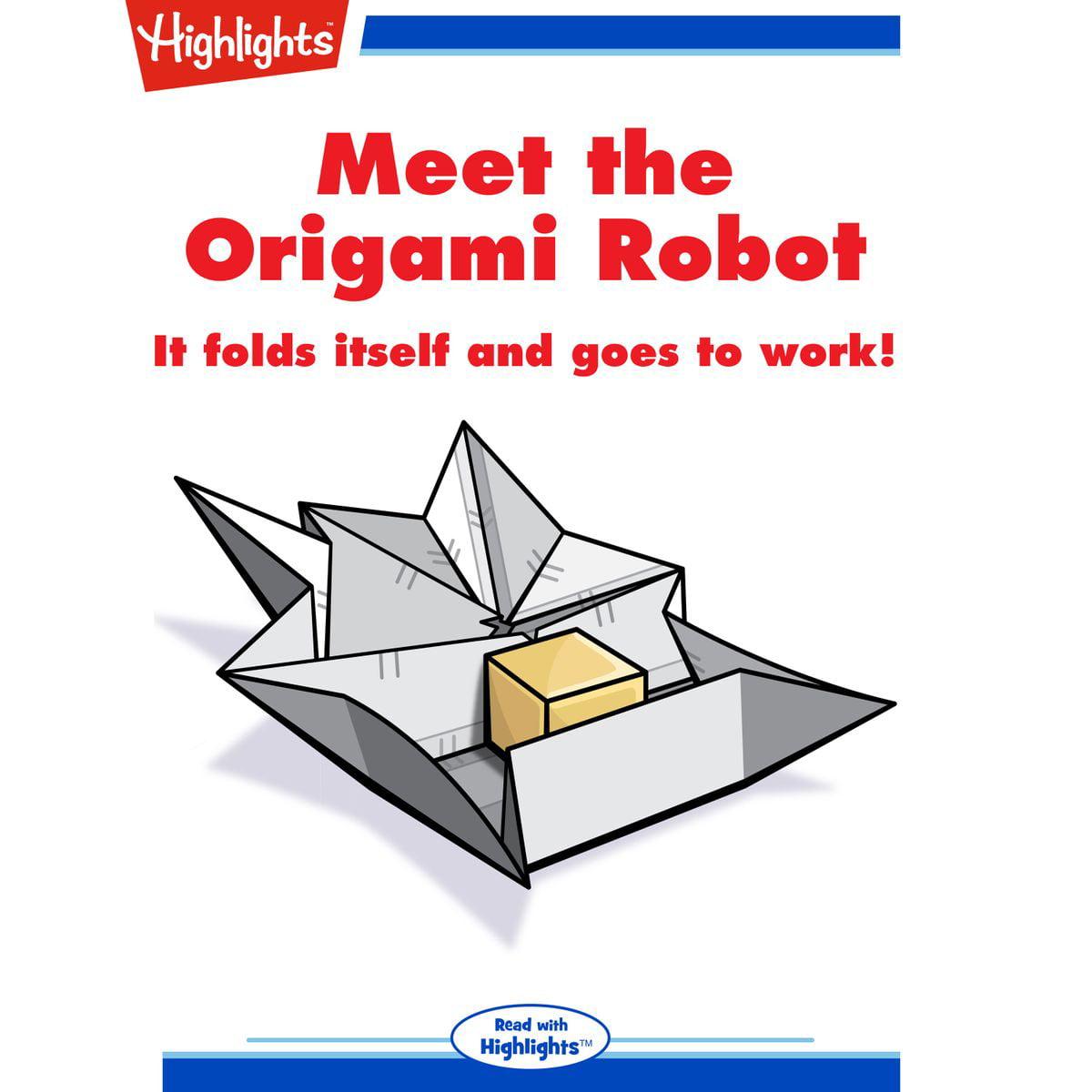 Meet the Origami Robot - Audiobook