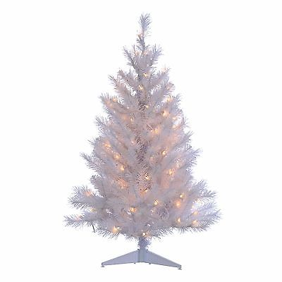 Sterling Inc. 3' White Colorado Spruce Christmas Tree with 100 Clear Lights with Stand