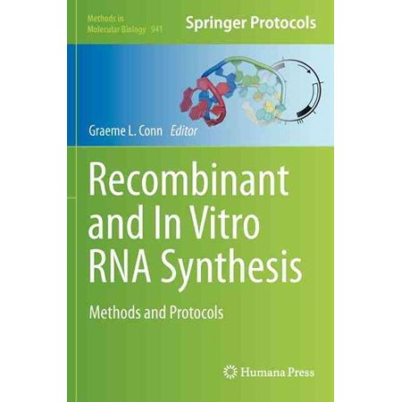 Recombinant And In Vitro Rna Synthesis