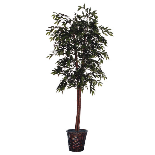 Vickerman Floor Ficus Tree in Basket