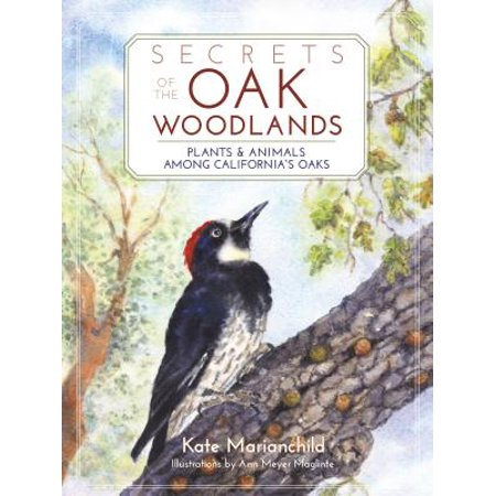 Secrets of the Oak Woodlands : Plants and Animals Among California's Oaks (Animal And Plant)