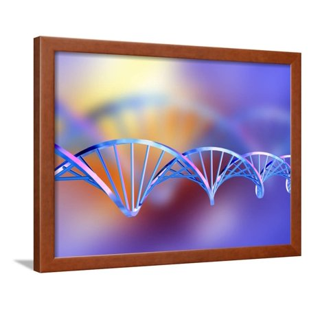 DNA Molecule Framed Print Wall Art By PASIEKA - Walmart.com