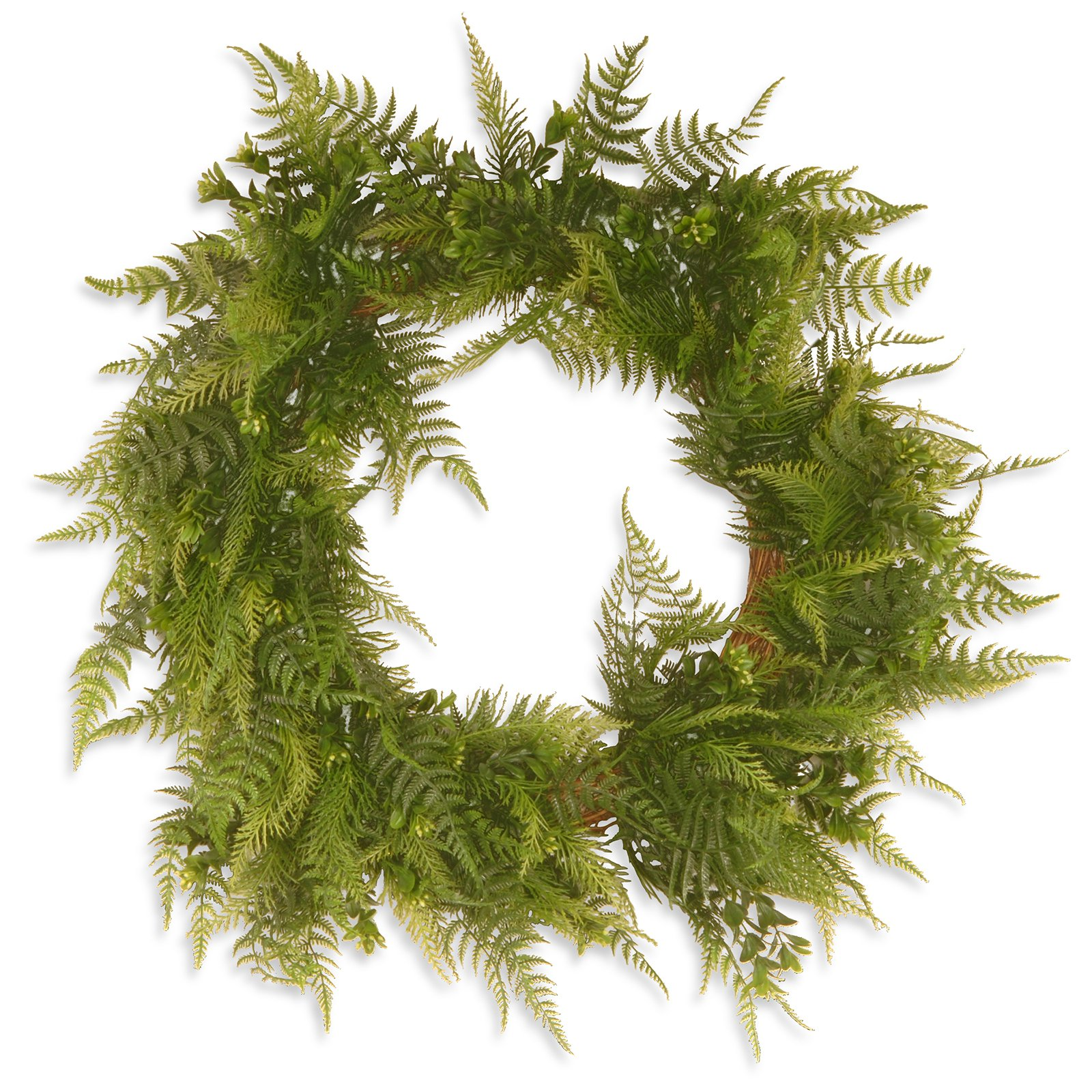 "National Tree Artificial 22"" Garden Accents Boston Fern Wreath"