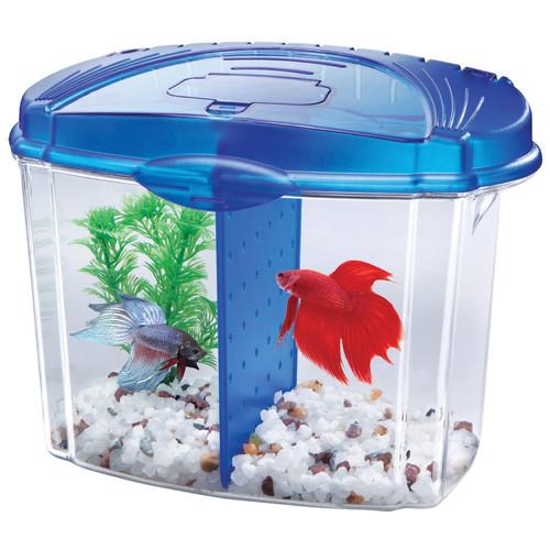 Aqueon Blue Desktop Starter LED Aquarium Kit, 0.5 gal