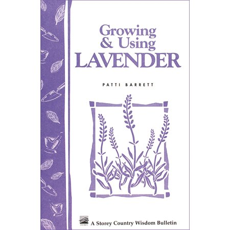 Growing & Using Lavender - Paperback (Best Way To Grow Lavender)