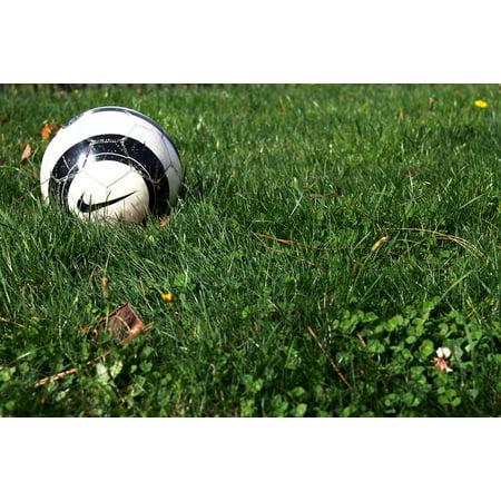 Framed Art For Your Wall Filed Grass Nike Sport Soccer Game Ball Football 10x13 Frame