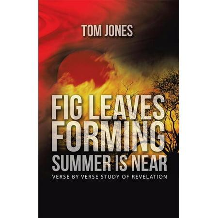 Summer Leaf (Fig Leaves Forming Summer Is Near - eBook)