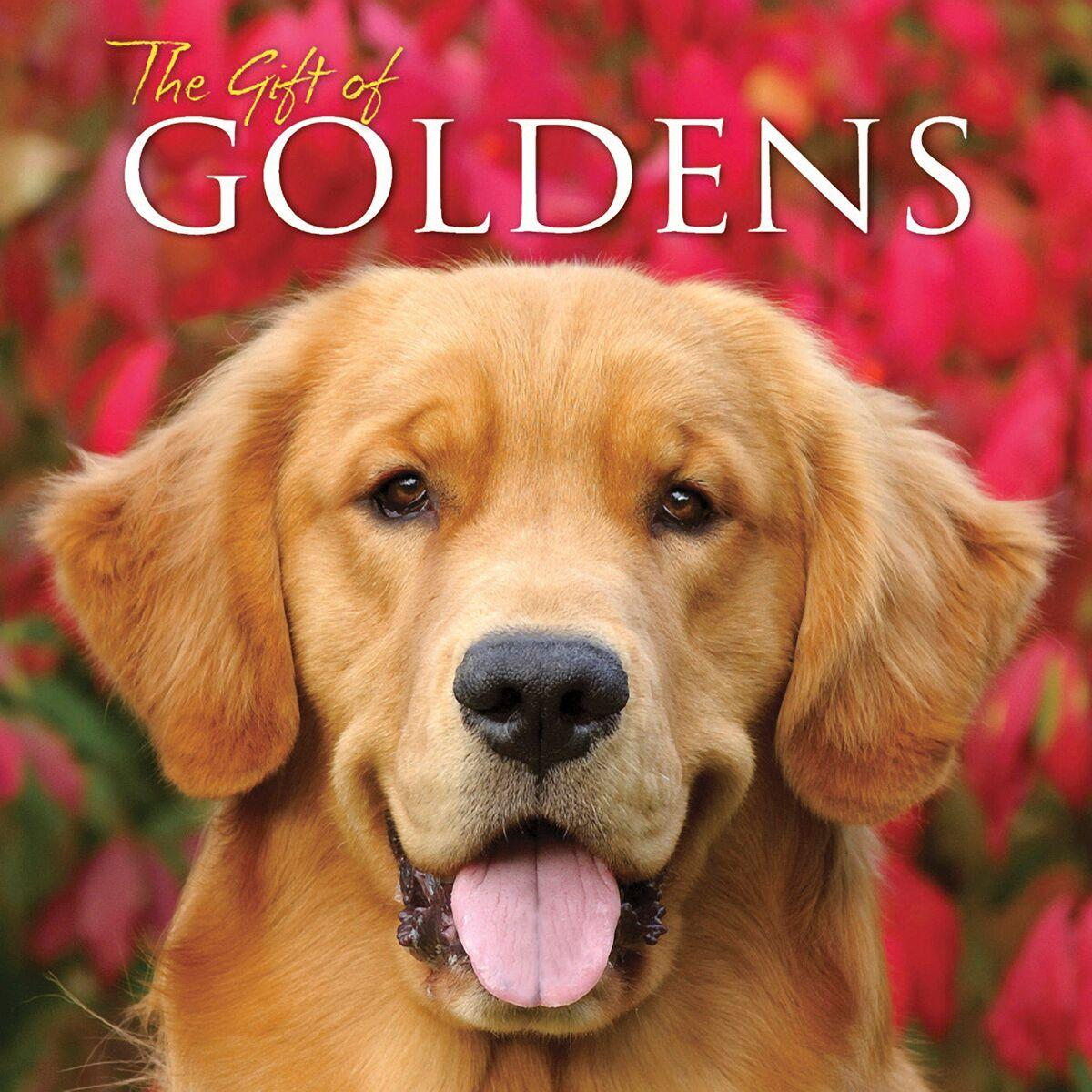 The Gift of Goldens (Other)