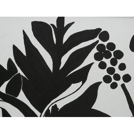 LAMINATED POSTER Mural Abstract Grapes Drawing Art Black And White Poster Print 24 x