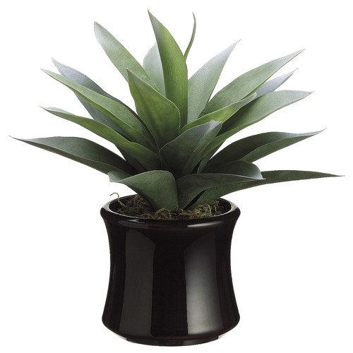 Tori Home Agave Desk Top Plant in Pot