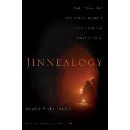 Jinnealogy : Time, Islam, and Ecological Thought in the Medieval Ruins of Delhi (Medieval Times Outfits)