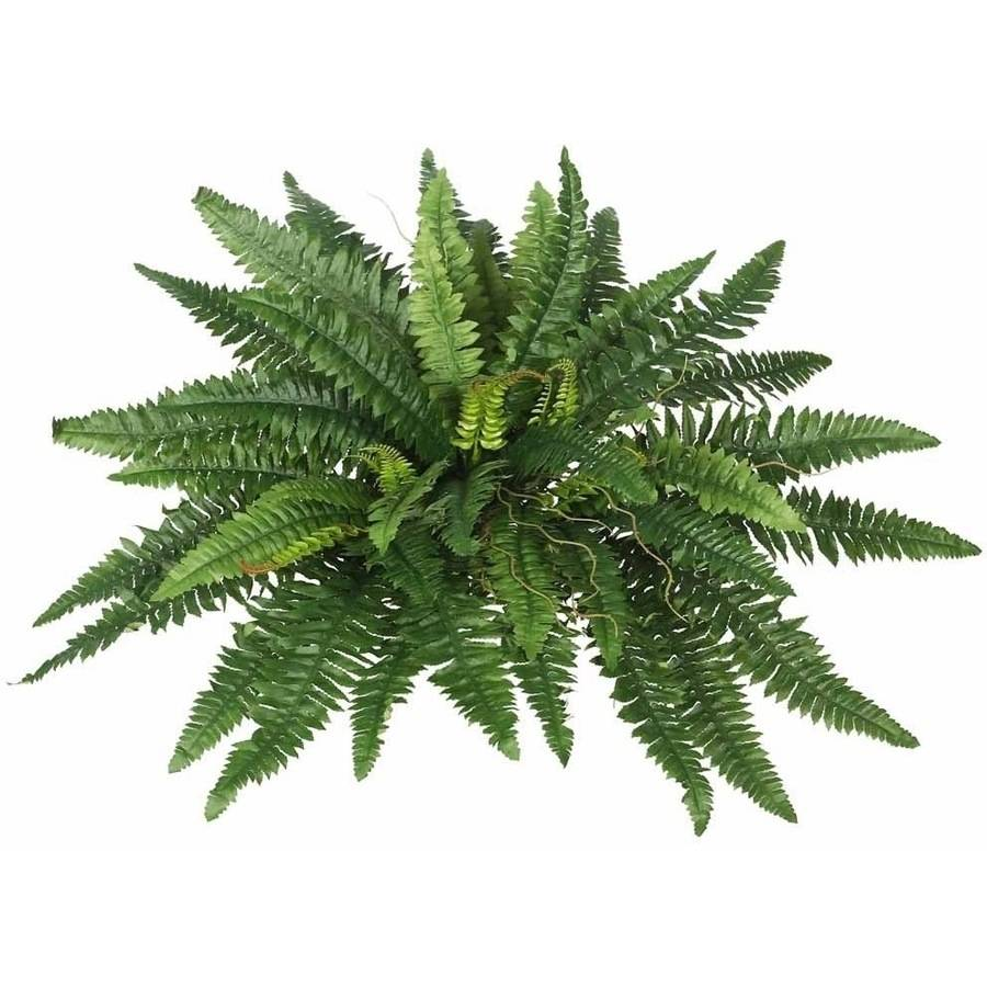"Vickerman 21"" Artificial Green Boston Fern Bush Featuring 53 Fronds"