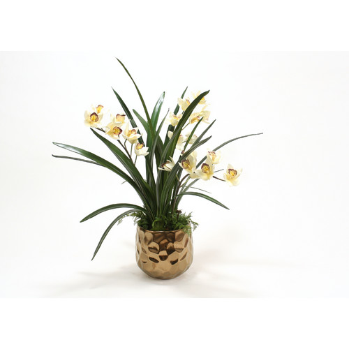Distinctive Designs Cream Burgundy Orchid in Gabbi Pot