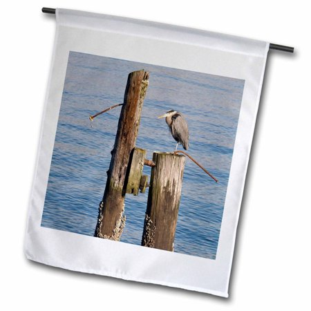 3dRose WA, Seattle, Great Blue Heron bird, Elliott Bay - US48 JWI2118 - Jamie and Judy Wild - Garden Flag, 12 by 18-inch Great Outdoors Bay