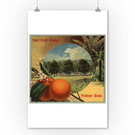 Piedmont Brand   California   Citrus Crate Label  9X12 Art Print  Wall Decor Travel Poster