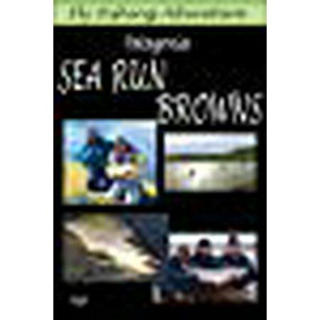 Fly Fishing Adventure, Patagonia Sea Run Browns ()