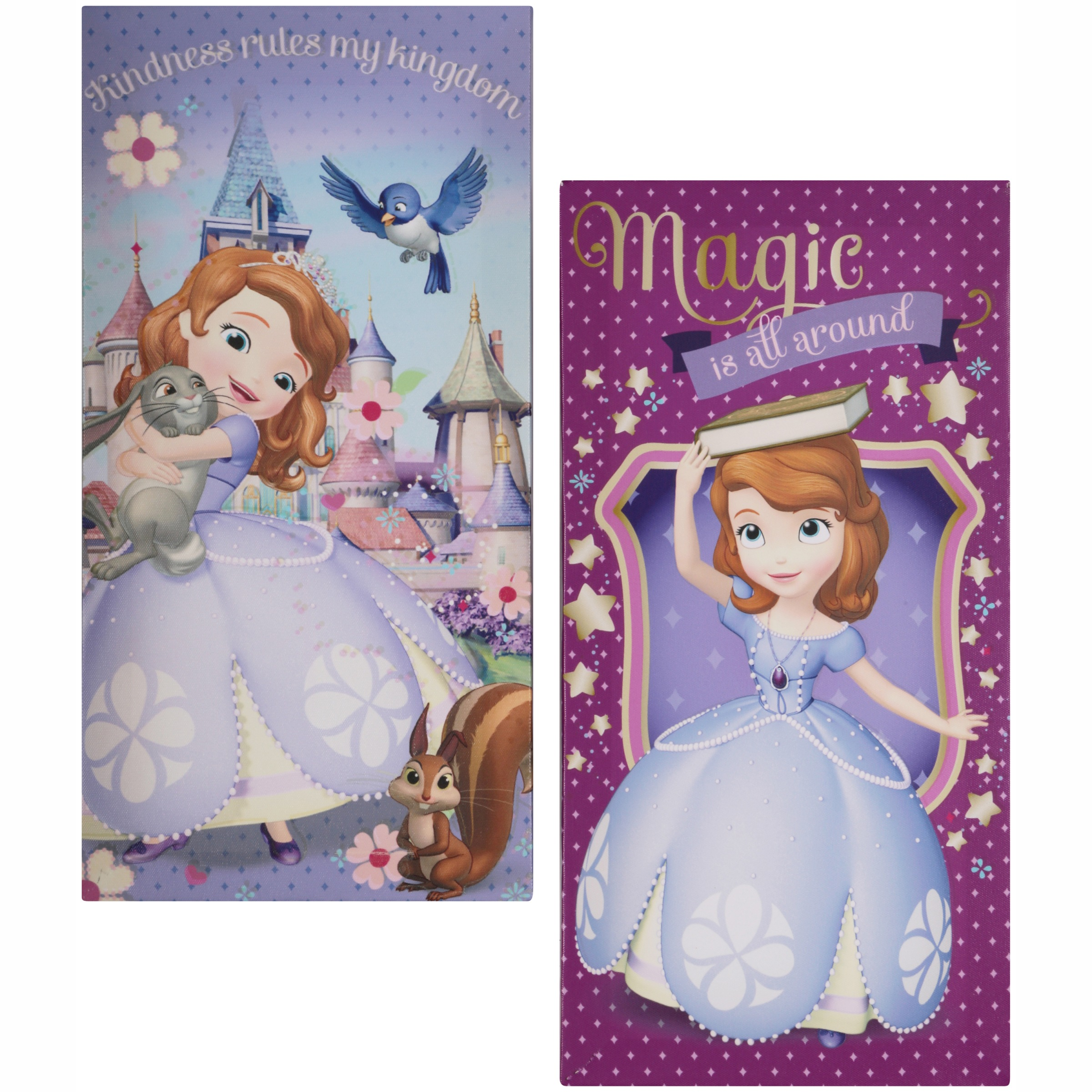 Disney Sofia the First 2 Pack Canvas Wall Art 2 ct Pack