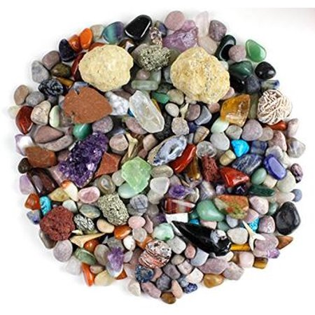 (Rock & Mineral Collection Activity Kit (Over 150 Pcs) , Educational Identification Sheet plus 2 Easy Break Geodes, Fossilized Shark Teeth and Arrowheads, Dancing Bear Brand)