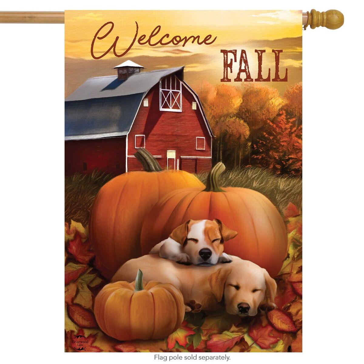 """Welcome Fall Puppies House Flag Autumn Pumpkin Farm 28"""" x 40"""" Briarwood Lane"""