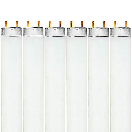 Luxrite F32T8/765 32W 48 Inch T8 Fluorescent Tube Light Bulb, 6500K Daylight White, 2650 Lumens, G13 Medium Bi-Pin Base, LR20735, 6-Pack