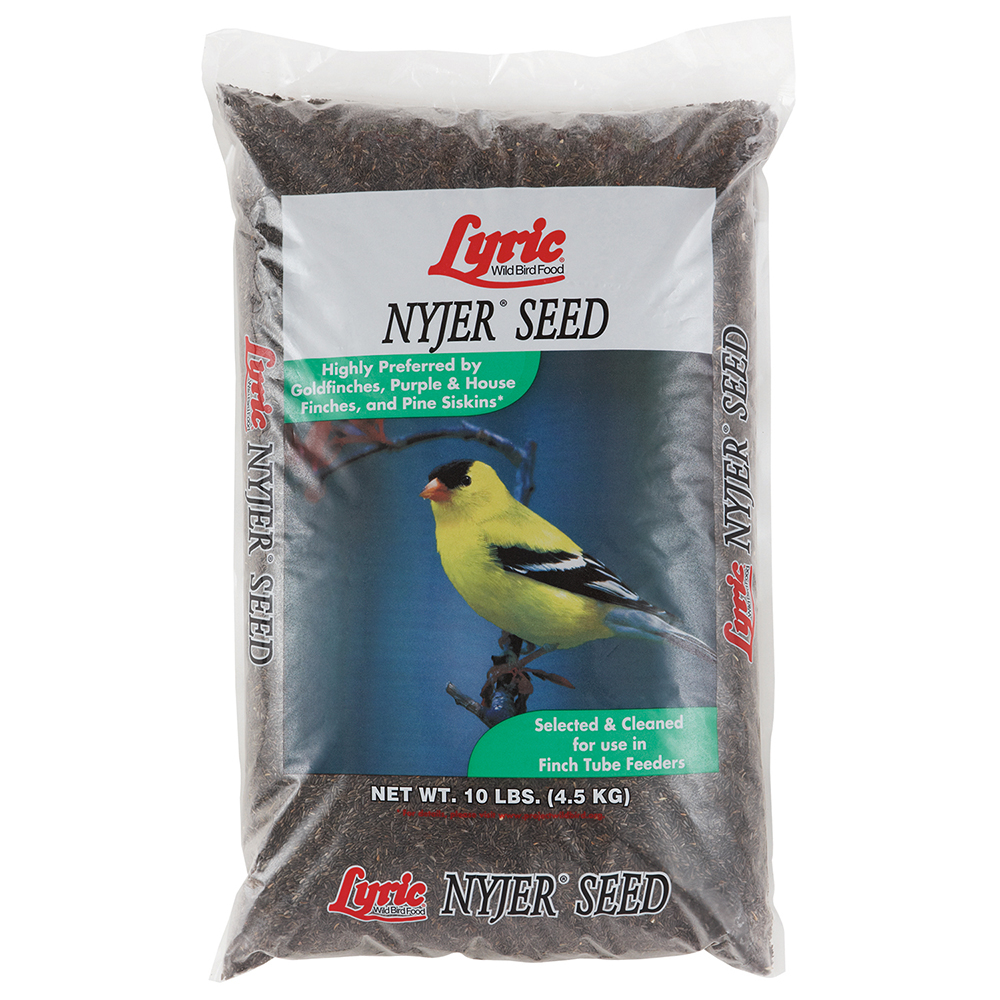 Lyric Nyjer Seed - 10 lb. bag