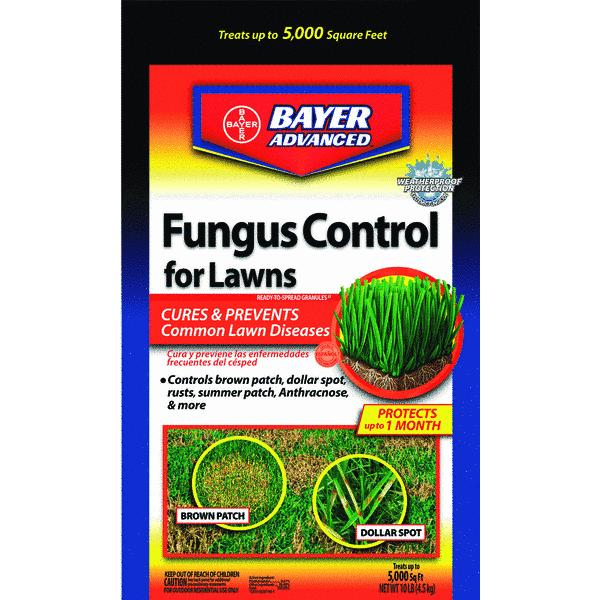 Bayer Advanced Fungus & Disease Control For Lawns