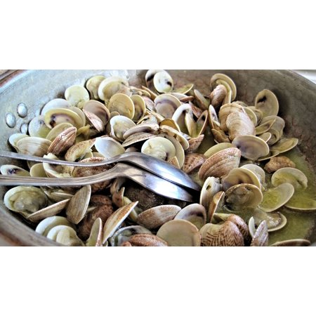 Canvas Print Seafood Fish Steamed Clams Sea Food Italy Fresh Stretched Canvas 10 x