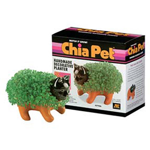 As Seen on TV Chia Pets Chia Kitten