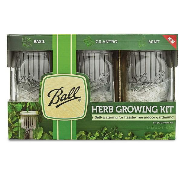 Ball Herb Growing Self Watering Kit 3