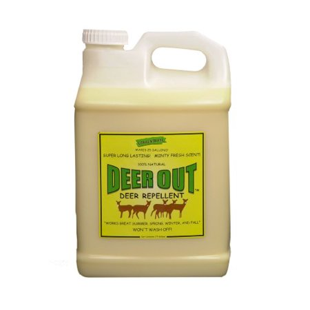 Deer Repellent: Deer Out deer repellent 2 1/2 gallon concentrate