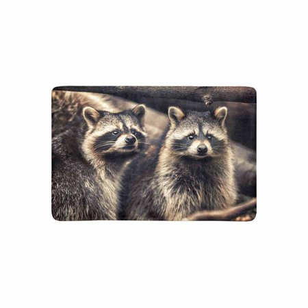 YUSDECOR Cute Raccoons in Zoological Garden Funny Animal Doormat Rug Home Decor Floor Mat Bath Mat 23.6x15.7 inch - image 1 of 3