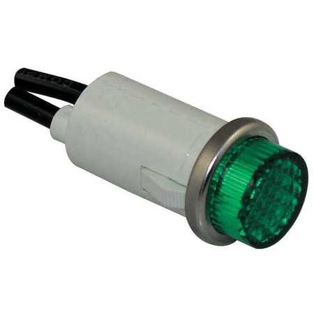 - DAYTON 22NY45 Raised Indicator Light,Green,24V