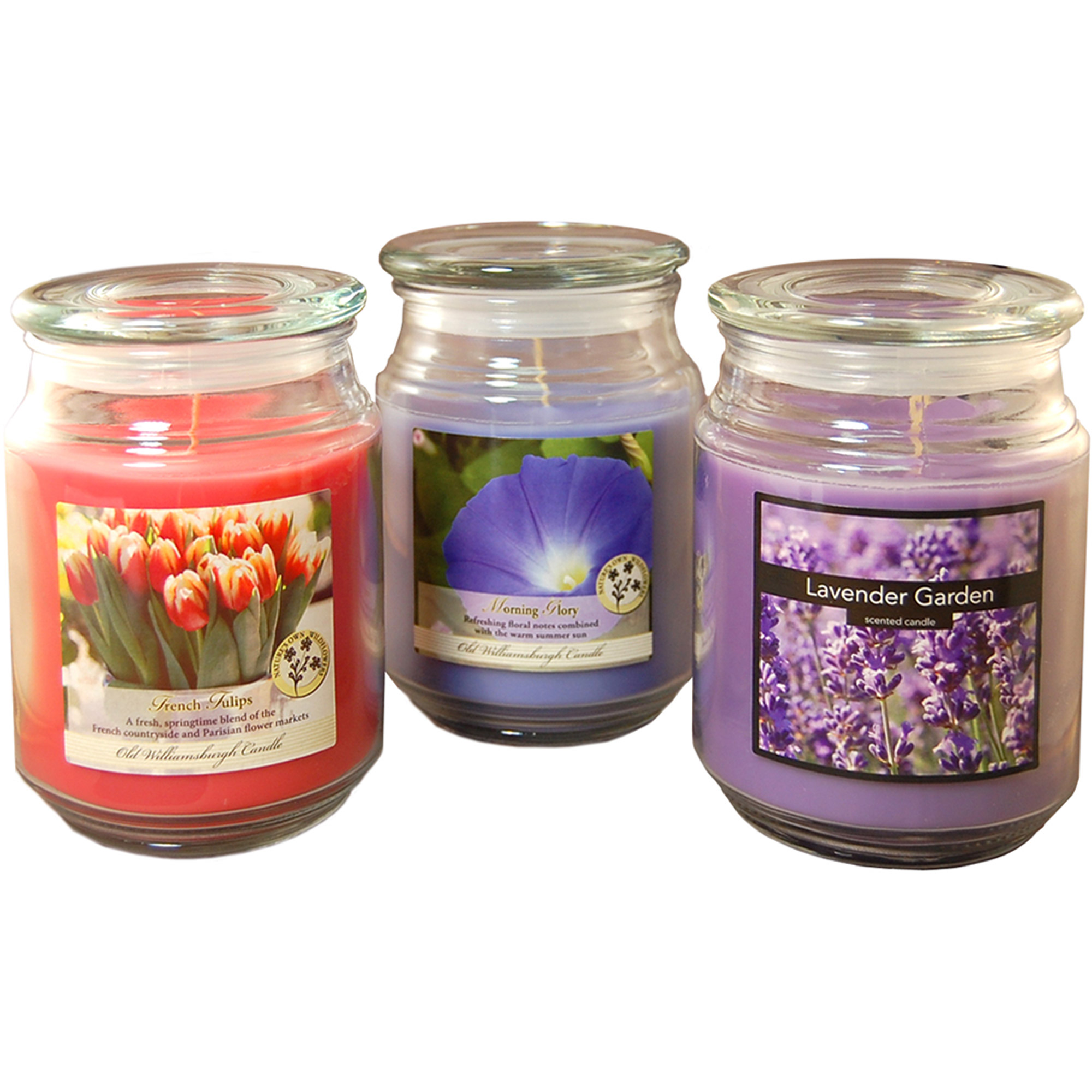 Floral Collection Scented Candles, 18 oz Apothecary Jar, Set of 3 by LumaBase
