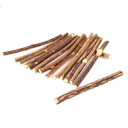 10/15/20pcs Natural Wood Polygonum Sticks Pet Catnip Teeth Molar Clean Toy