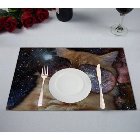 GCKG Star Galaxy Outer Space Cool Sunglass Cat Placemats 12x18 inches Set of (Cat Space Glasses)