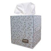 Cascades Tissue Group Cascades Elite Facial Tissue, 2-Ply, 9 x 7 8/10, White, 95/Box, 36 Boxes/Carton 4090