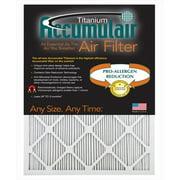 Accumulair FI17X25 Titanium 1 In. Filter,  Pack Of 4