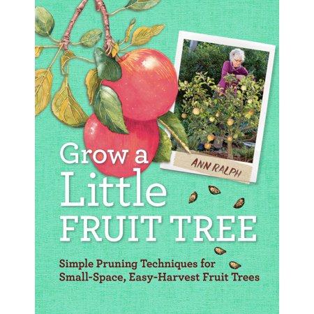 Grow a Little Fruit Tree - Paperback