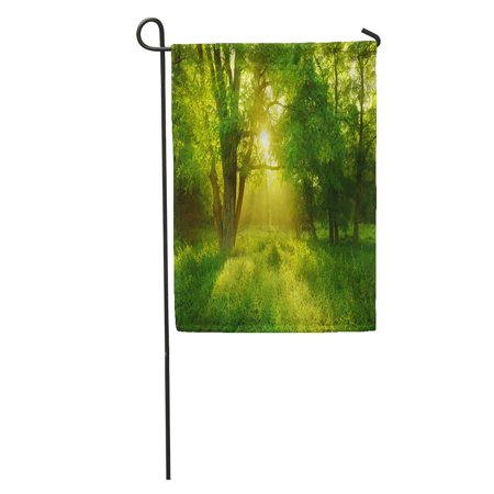 LADDKE Green Sun Sunlit Foggy Forest Black Locust Tree on Clearing Meadow Grass Garden Flag Decorative Flag House Banner 28x40 inch
