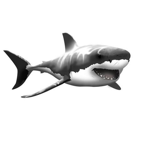 VWAQ Giant Great White Shark Wall Decal Peel and Stick Wall Art … (24