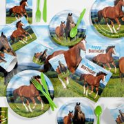 Wild Horse Birthday Party Supplies Kit for 8 Guests
