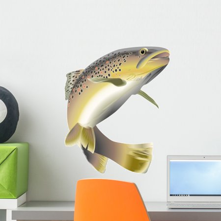 Wildlife Trout Wall Decal by Wallmonkeys Peel and Stick Graphic (18 in H x 15 in W) WM243333