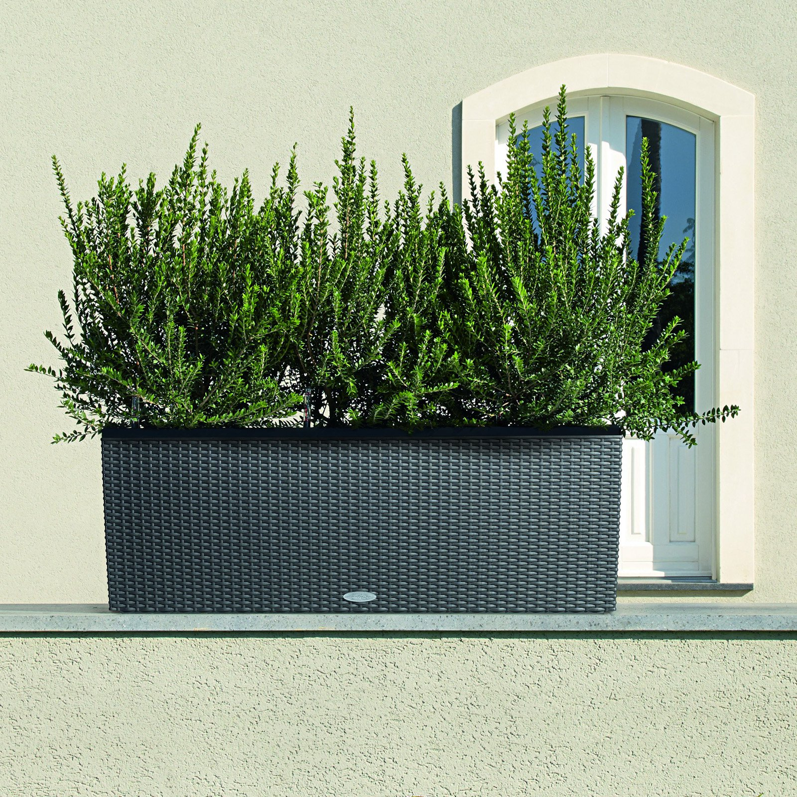 Rectangle Lechuza Trio Cottage 30 Self-Watering Resin Planter by LECHUZA