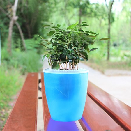 Colorful Self Watering Round Planter Flower Pot Home Garden Decor Professional Green Plant Vase