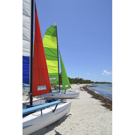 Small Catamarans on a Southeast Florida Beach Print Wall Art By